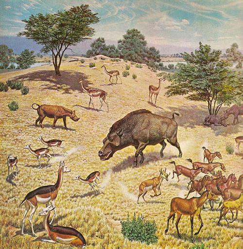 Клима кенозојске ере