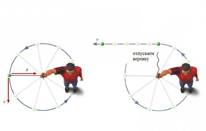centripetalni pospešek