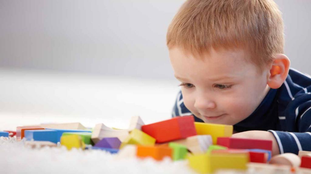 vzorec obdelave osebnih podatkov otroka