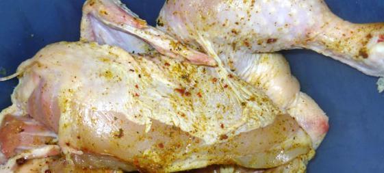 Ricette di pollo alla griglia