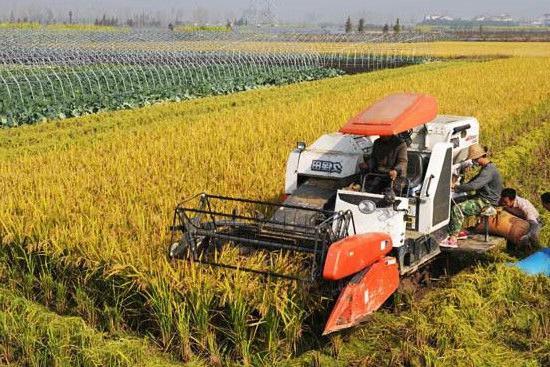 Tipi di agricoltura