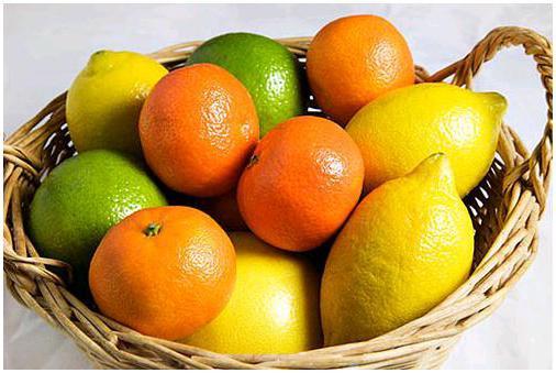Naslovi citrusov