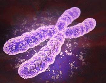 Класификација антибиотика по механизму деловања