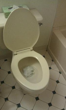 come pulire lo zoccolo nella toilette