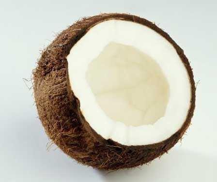 calorie di cocco