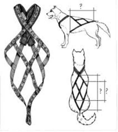 Ogrlica za husku napravite sami