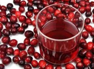 succo di mirtillo rosso, ricetta