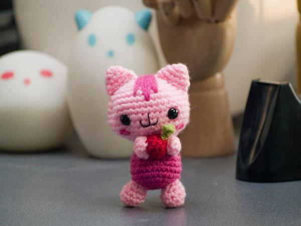 gatto a maglia con aghi