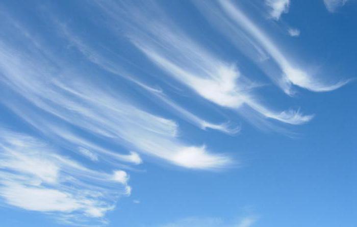 oblaki cirusov