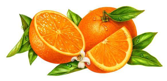 oranžni džem