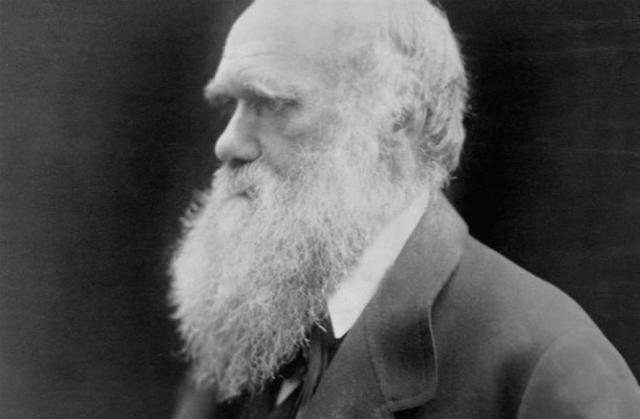 приносът на Дарвин за биологията накратко