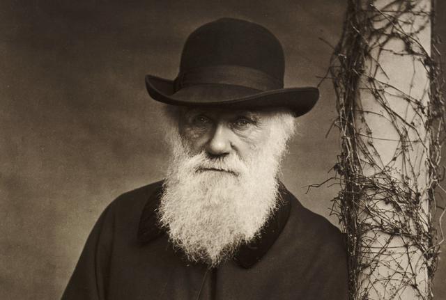 Приносът на Дарвин за развитието на биологията