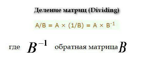 matrice bidimensionale