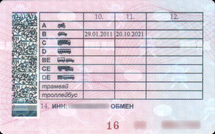 categorie di decodifica della patente di guida del nuovo campione