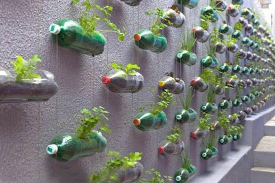 decorazione del giardino di bottiglie di plastica
