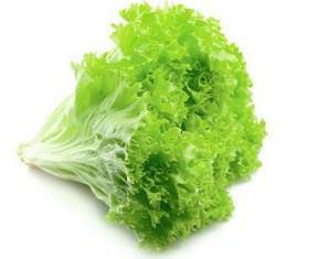 Zelena solata fotografija