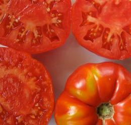 Tomato Doll Reviews