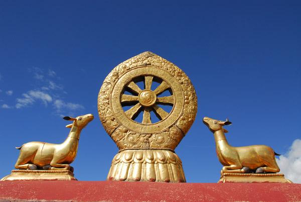 Две газеле у близини Дхарма точка