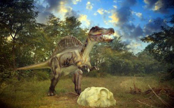 скелет на динозавър за деца