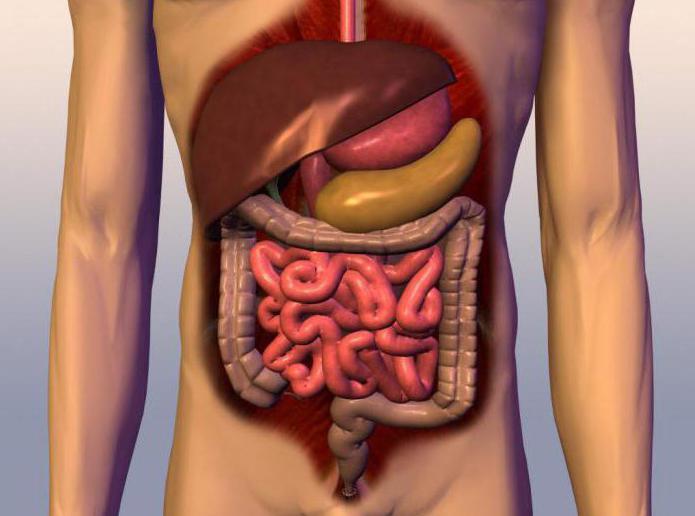 malattie del tratto gastrointestinale