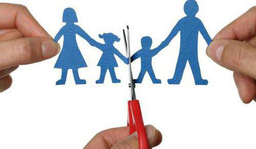 vzorky nároků na rozvod