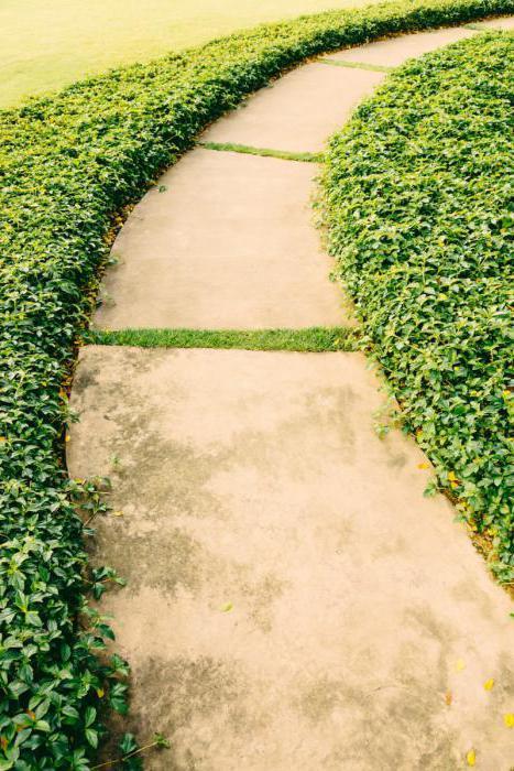 пътека с каменна градина