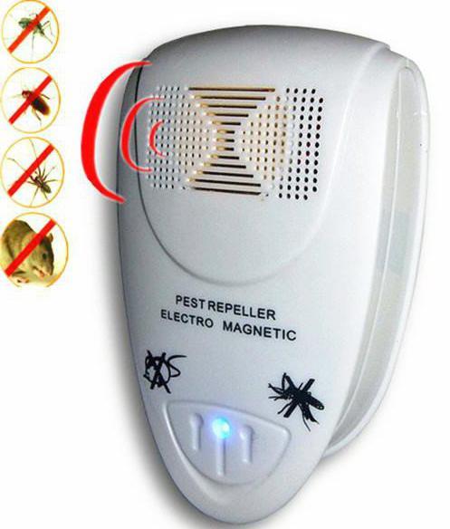 ecografia di zanzare