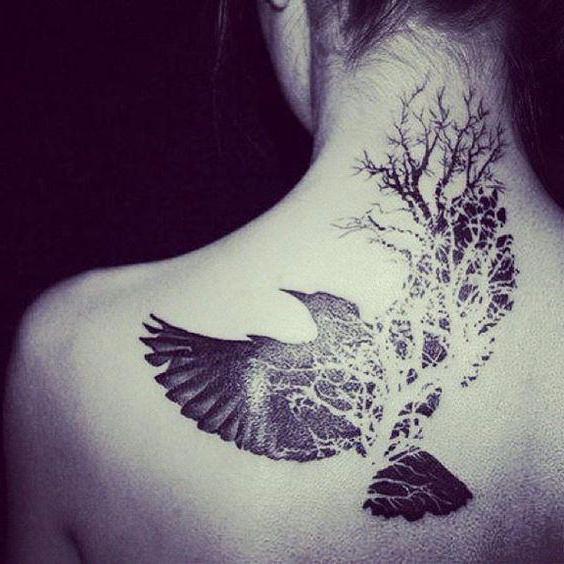 Tatuaż Dove Wartość Dla Chłopców I Dziewcząt Historia I