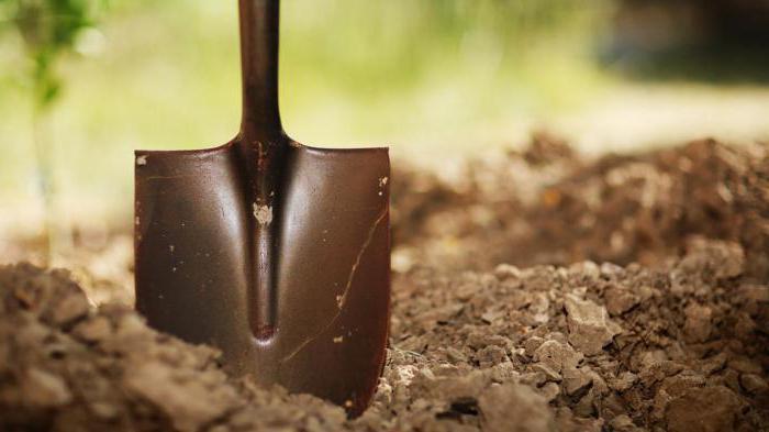 iskopati zemlju snova