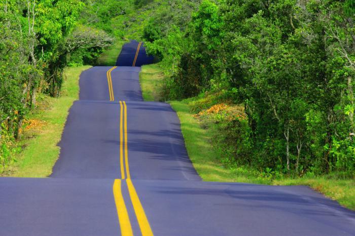 što sanja o mnogim cestama
