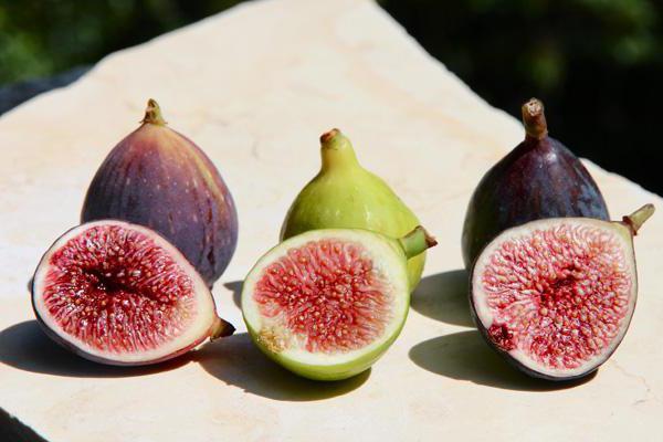 полезни и лечебни свойства на смокините