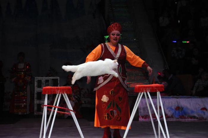 Ekaterinburgova cirkuska fotografija