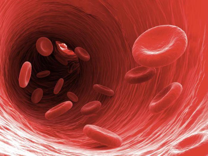 rezultati biopsije endometrija