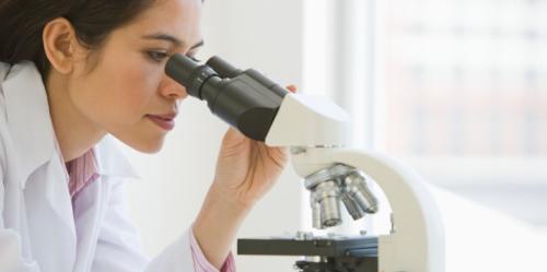 leczenie kałową enterococcus