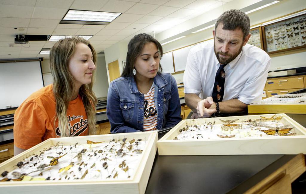 Dipartimento di Entomologia