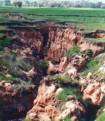 erozija