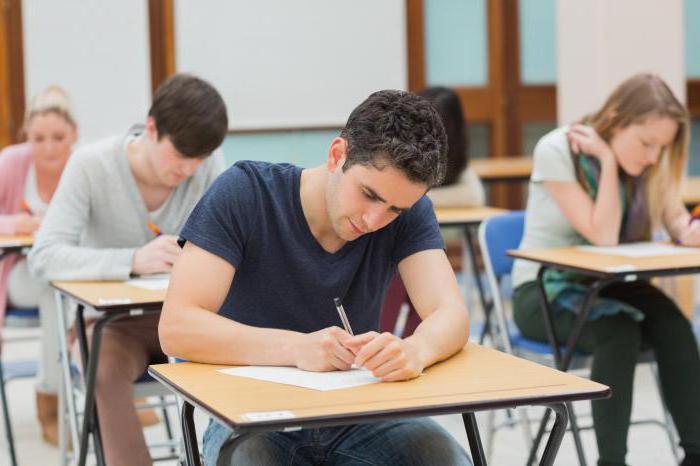 како написати есеј о друштвеним студијама