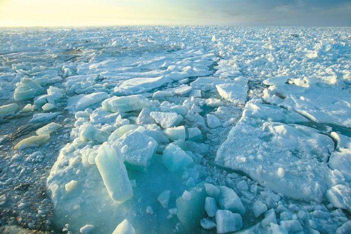 zona permafrost