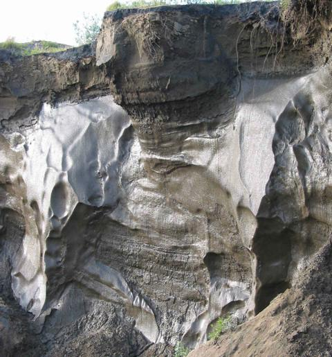 aree permafrost