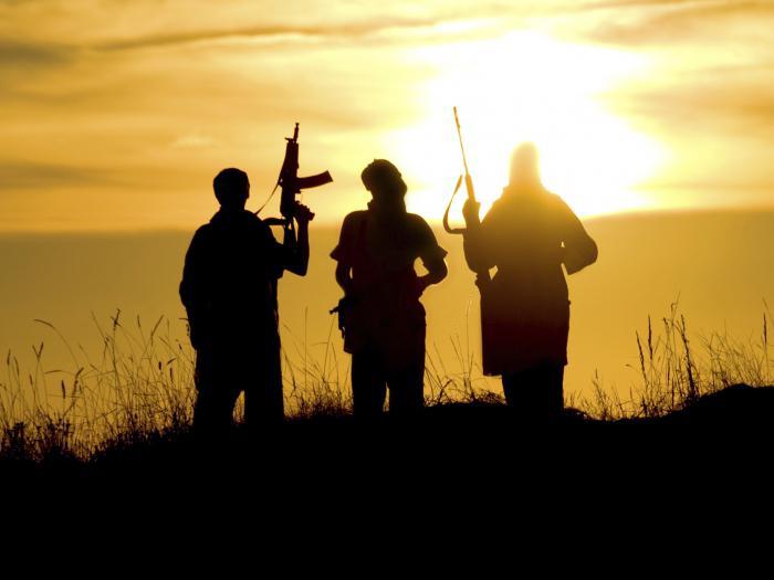 međunarodne terorističke organizacije