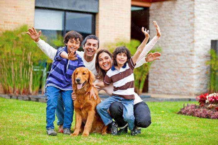 Врсте породичних односа