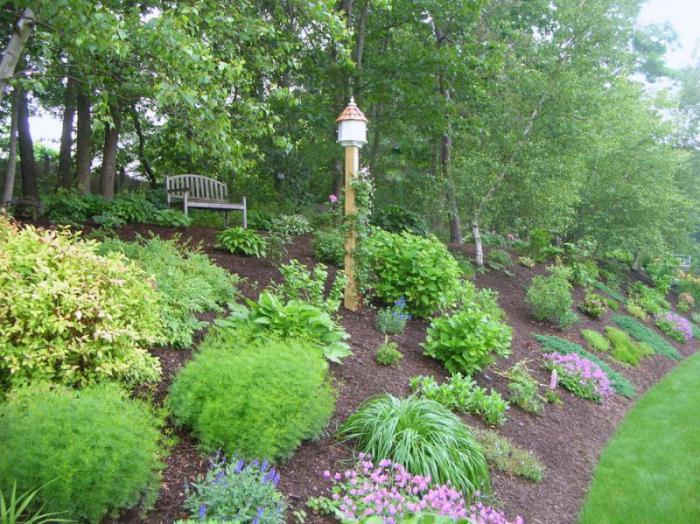 giardinaggio fai-da-te di casa