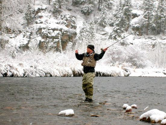 Cattura di pesca