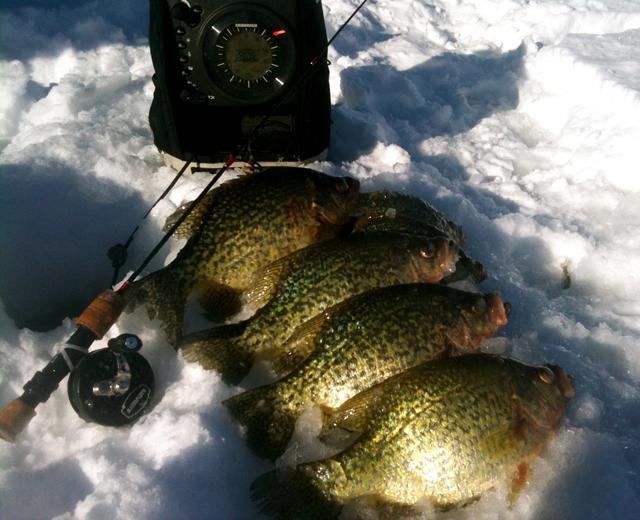 Pesca sulla noodle in inverno