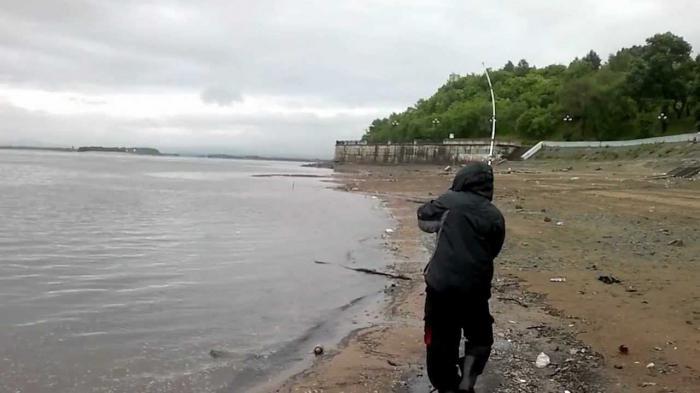 Риболов на амура на сазан