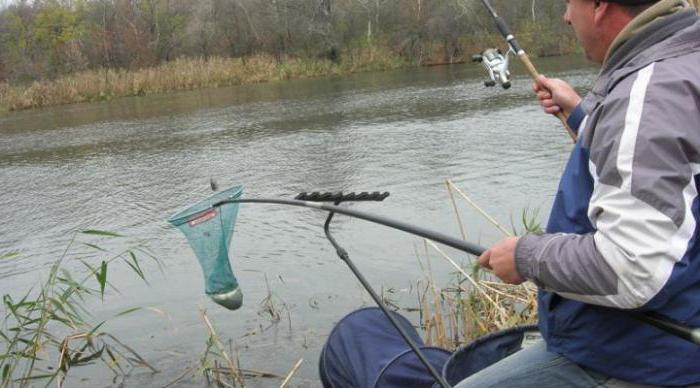 Rybolov v Belgorodu