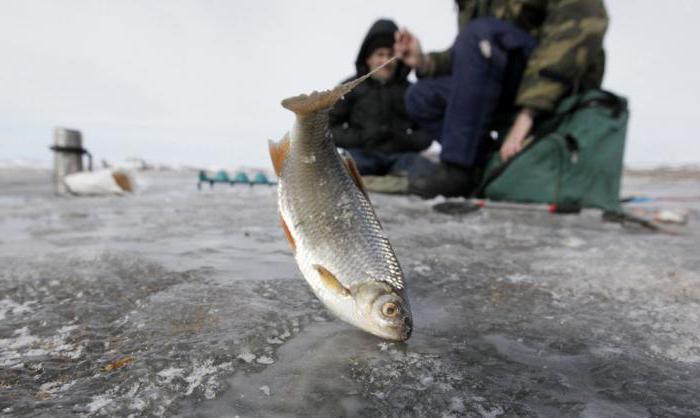 Риболов на река Иртиш