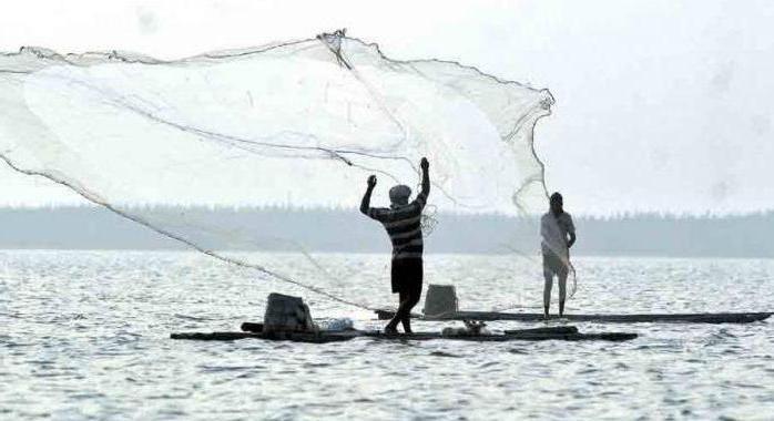 Ribolov iz brane u Finskom zaljevu