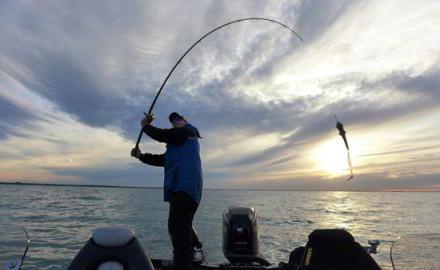 Ribolov na južnoj brani Finskog zaljeva