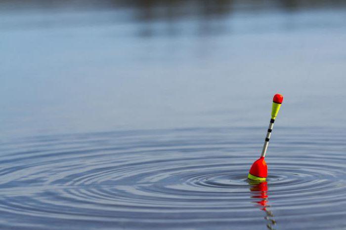 bobber di pesca